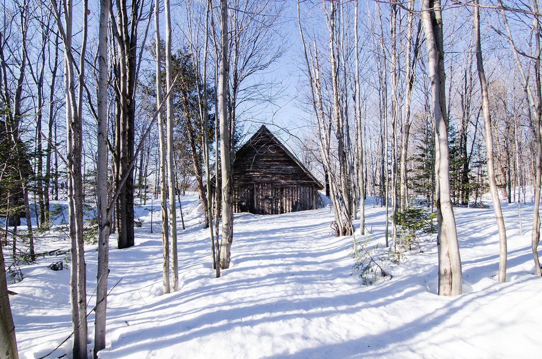 La cabane à sucre Québec